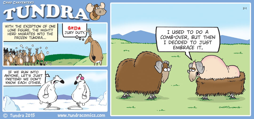 february 2015 sunday strips
